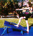 Compitition Mini-Tramps & Gym Mats, for Gymnastics, Cheerleading, Vaulting, & Tumbling